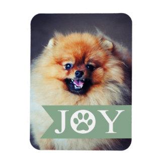 Joy Mint Banner Pet Photo Holiday Magnet