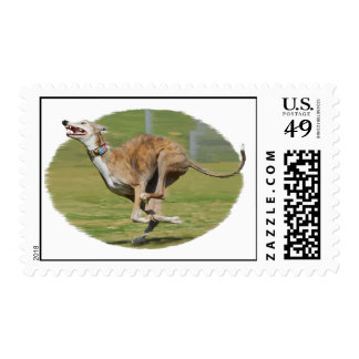 Joy of Running in Grass Postage Stamps