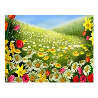 Joy Of Spring Postcard