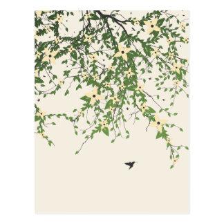 Joyas Voladores Postcard