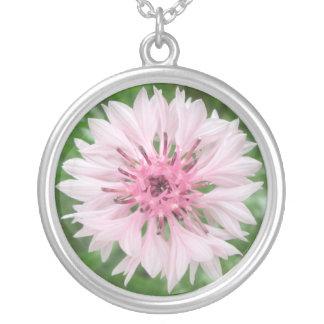 Joyería - collar - rosa/el botón del soltero rosad