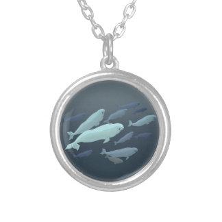 Joyería de la ballena de la beluga del bebé del co