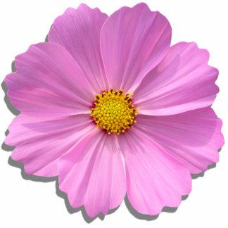 Joyería - Pin - cosmos rosado medio Fotoescultura Vertical