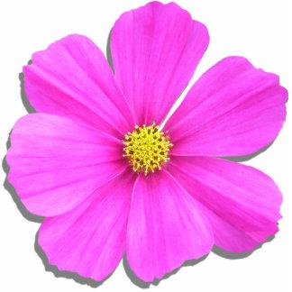Joyería - Pin - cosmos rosado oscuro Fotoescultura Vertical