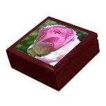 Joyero color de rosa romántico de la caoba del bro cajas de joyas