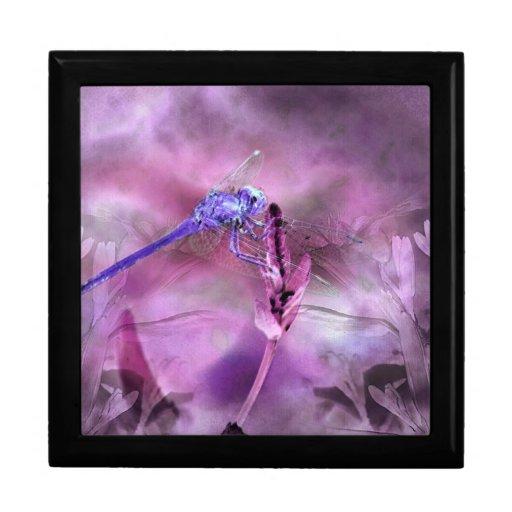 Joyero de la libélula de la fantasía caja de recuerdo