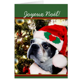 Joyeux Noël Christmas Boston terrier Card