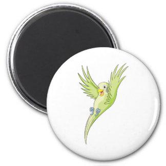 Joyful Budgerigar Budgie 2 Inch Round Magnet