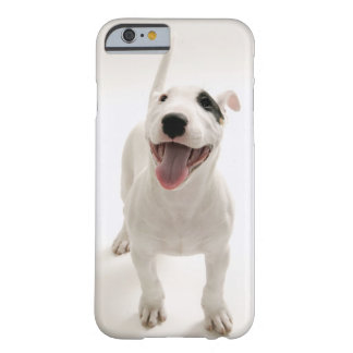 Joyful Bull terrier Barely There iPhone 6 Case