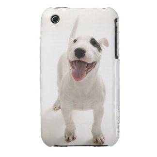 Joyful Bull terrier iPhone 3 Cover