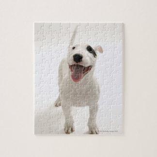 Joyful Bull terrier Jigsaw Puzzle
