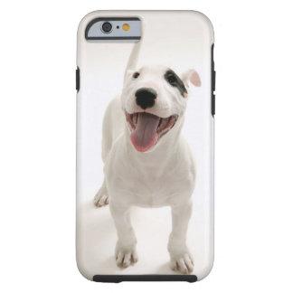 Joyful Bull terrier Tough iPhone 6 Case
