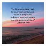 JOYFUL JEREMIAH 29:11 SUNRISE POSTER