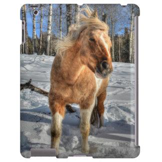 Joyful Palomino Pinto Horse and Snow