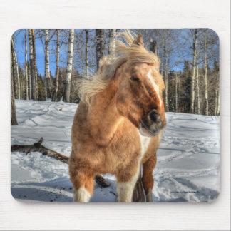 Joyful Palomino Pinto Horse and Snow Mouse Pad