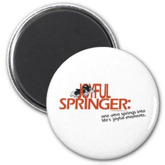 Joyful Springer Defined Magnets