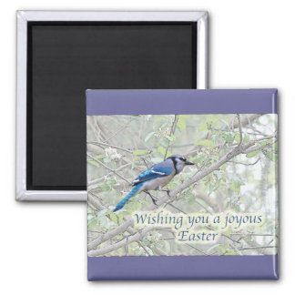 Joyous Easter Blue Jay Songbird 2 Inch Square Magnet