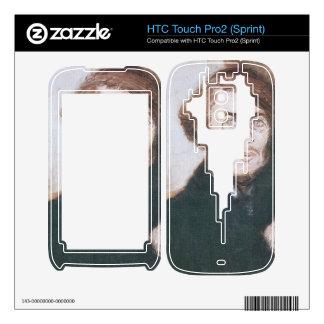 Jozsef Rippl-Ronai - In English HTC Touch Pro2 Skin