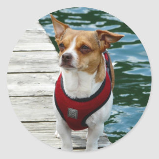 JRT in Red Vest on Boat Dock Classic Round Sticker