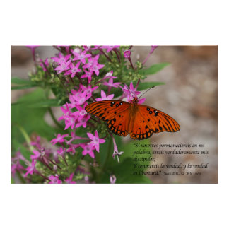 Juan 8:31, 32 con Mariposa Gulf Fritillary Poster