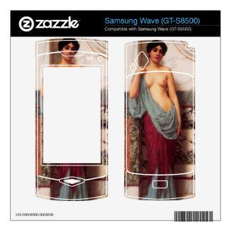 Juan Guillermo Godward - en el Thermae Skin Para El Samsung Wave