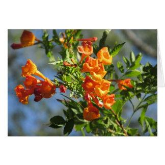 Jubileo anaranjado tarjeta pequeña