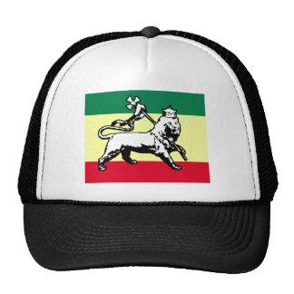 Judah Lion Estonia flag Mesh Hats