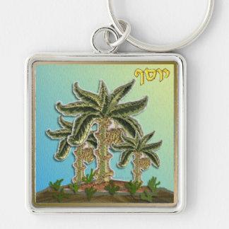 Judaica 12 Tribes Israel Joseph Key Chain