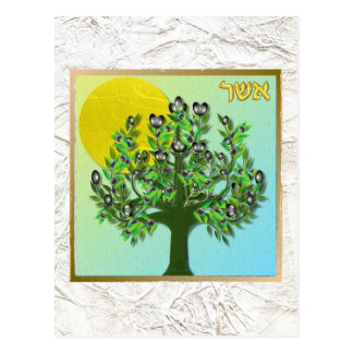 Judaica 12 Tribes Of Israel Asher Postcard