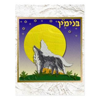 Judaica 12 Tribes Of Israel Benjamin Postcard