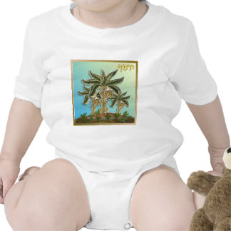 Judaica 12 Tribes Of Israel Joseph Baby Creeper