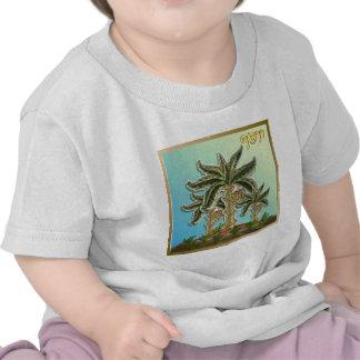 Judaica 12 Tribes Of Israel Joseph Shirt