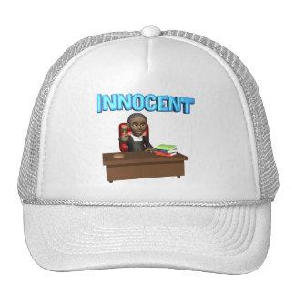 Judge Hats