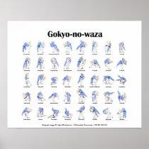 Judo throws poster