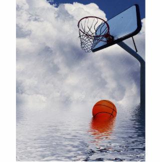 Juego de baloncesto 'Lechuga romana llamada de la  Esculturas Fotográficas