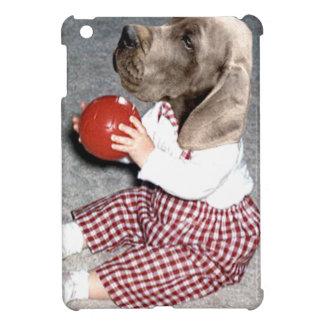 juego de la bola del perro