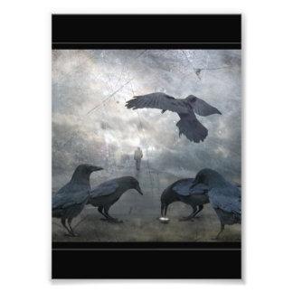 Juego de los cuervos con tiempo perdido impresion fotografica