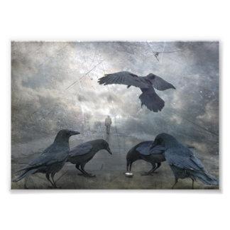 Juego de los cuervos con tiempo perdido arte fotografico