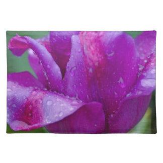 juego de manteles individuales tulipán