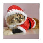 Juego de Santa del gato del gatito de las Felices  Azulejo Ceramica