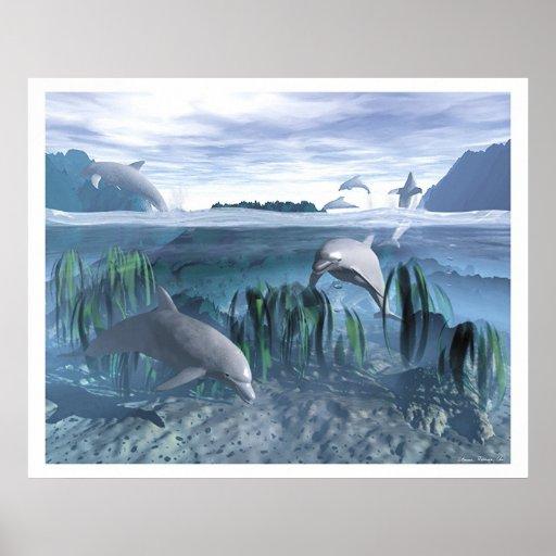 Juego del delfín póster