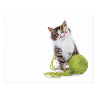 Juego del hilado del gatito postal