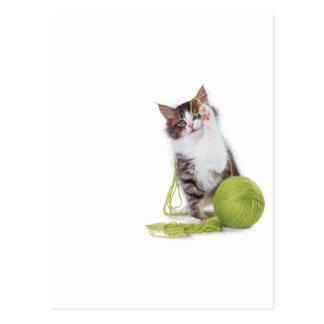 Juego del hilado del gatito postales