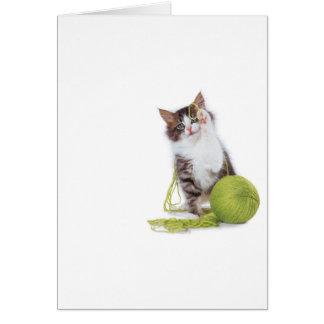 Juego del hilado del gatito tarjeta de felicitación