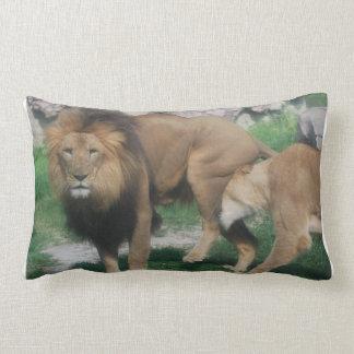 Juego del león cojin