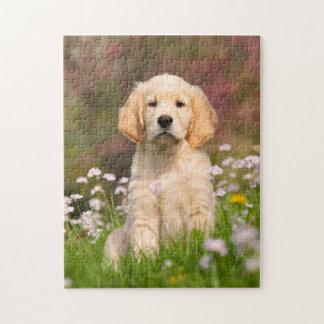 Juego lindo 11x14 del perrito del perro del golden puzzle
