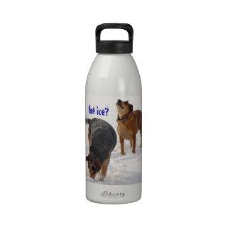 Juego lindo de los perros del ganado en el amante  botellas de agua reutilizables