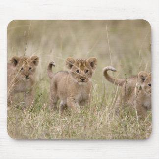 'Juego Reserve de África, Kenia, Mara del Masai Alfombrillas De Ratones