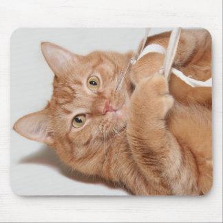 Juegos del gatito alfombrillas de raton