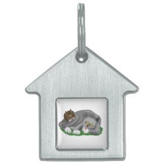 Juegos grises del gatito con su conejito PAL Placa De Mascota
